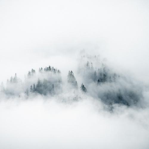 Ein Moment in Nebel und Wolken