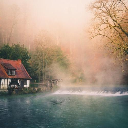 Morgens den Nebel begrüßt