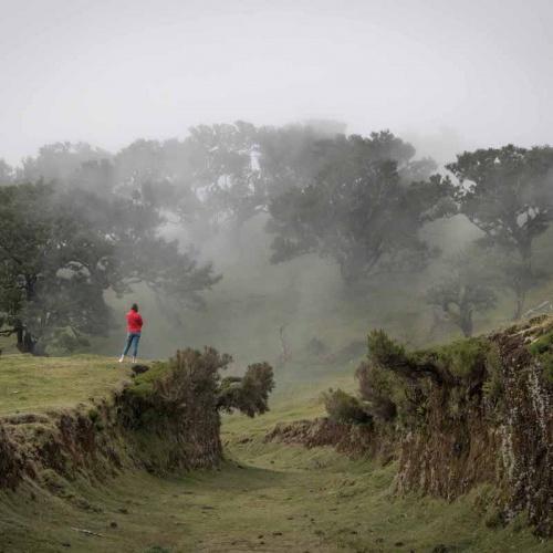 Über den Wolken - Abenteuer Madeira