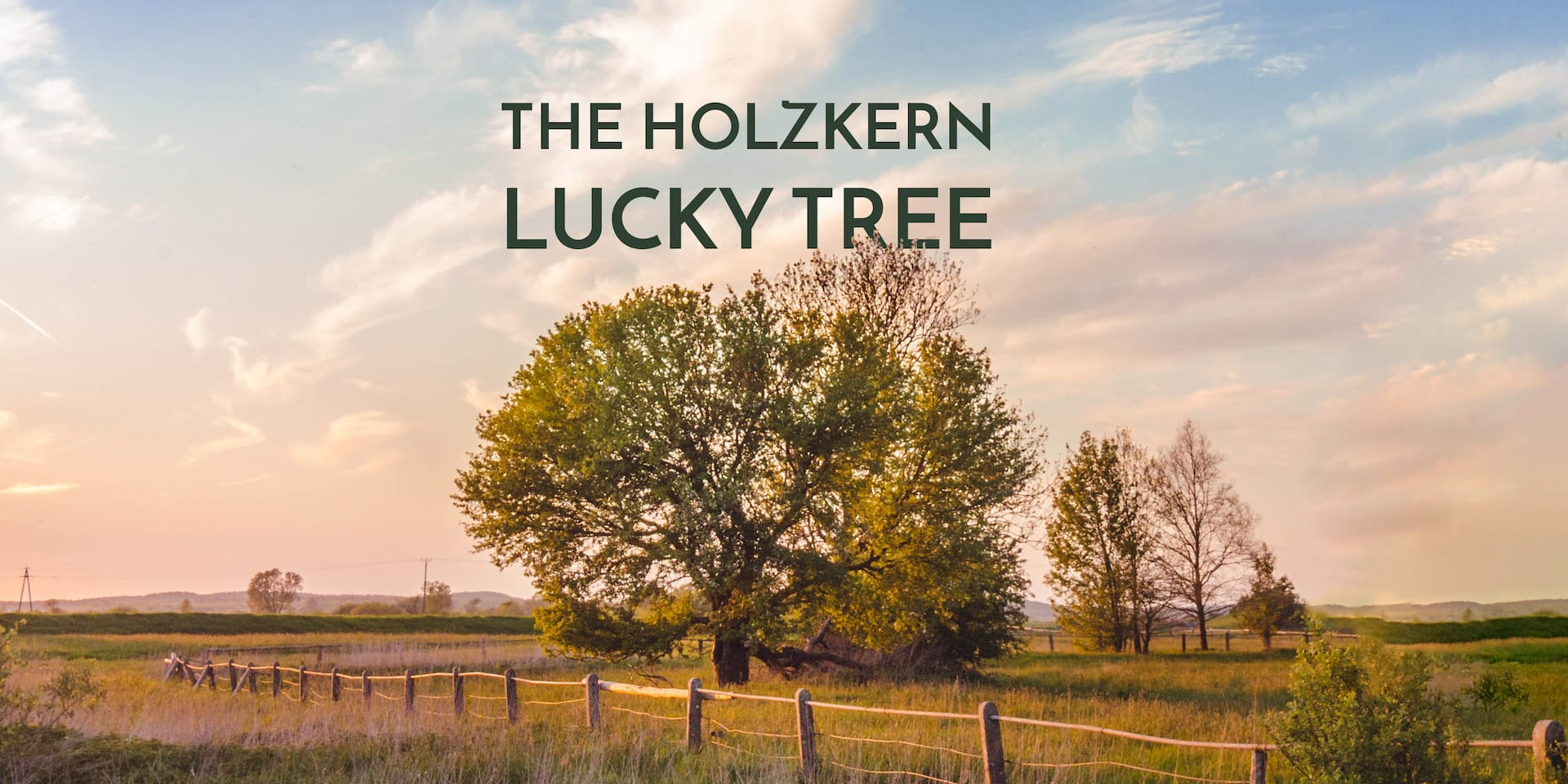 The Holzkern Lucky Tree
