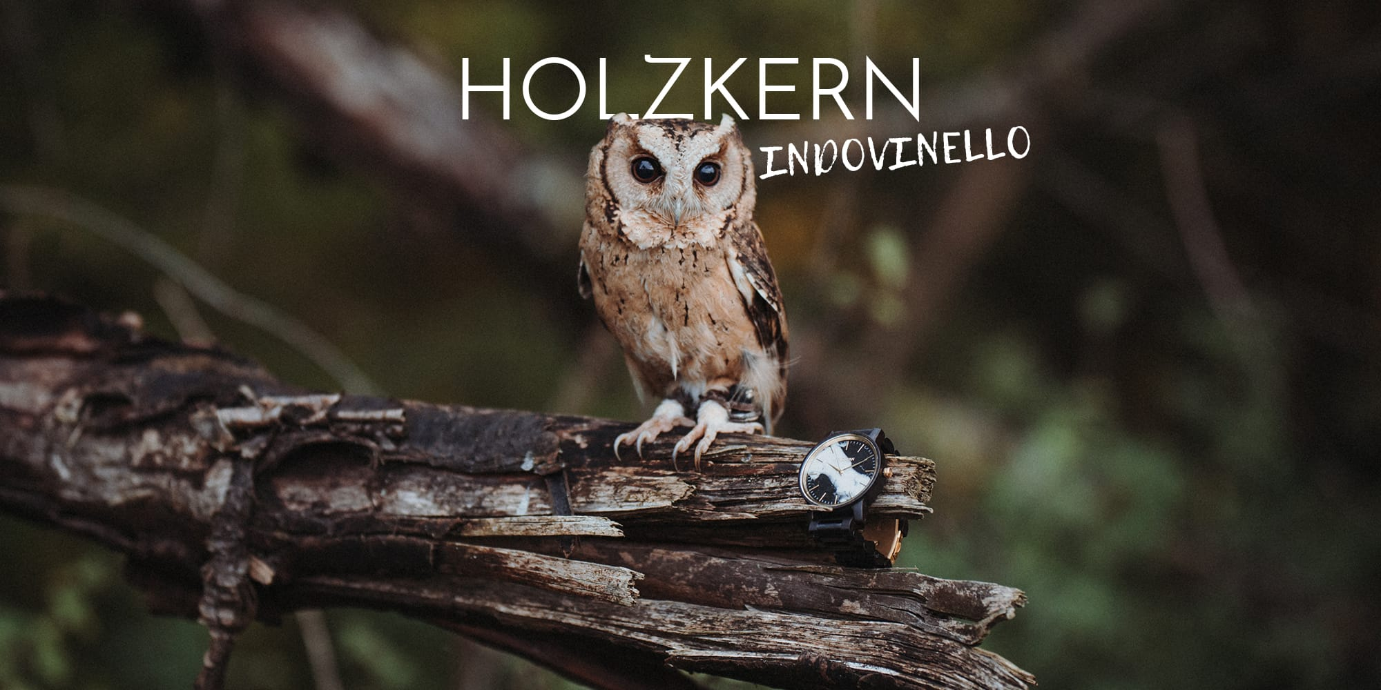 Il Grande Indovinello della Civetta di Holzkern