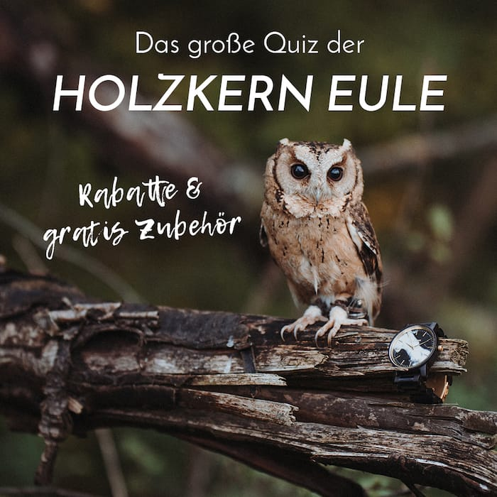 Das große Quiz der Holzkern Eule