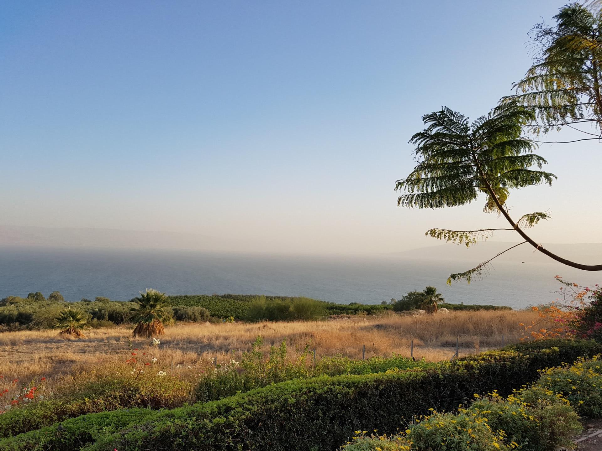 Color your Life - Eine unerwartete Musikreise / Teil 1 - Israel