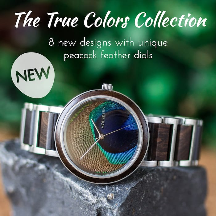 Mainslider True Colors EN