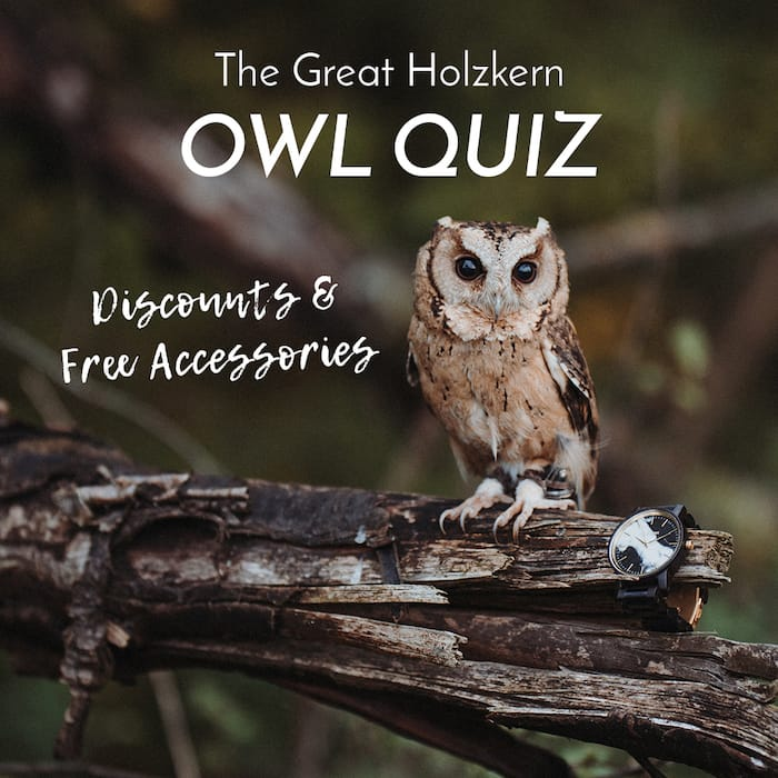 Holzkern Quiz Trend Slider WORLD