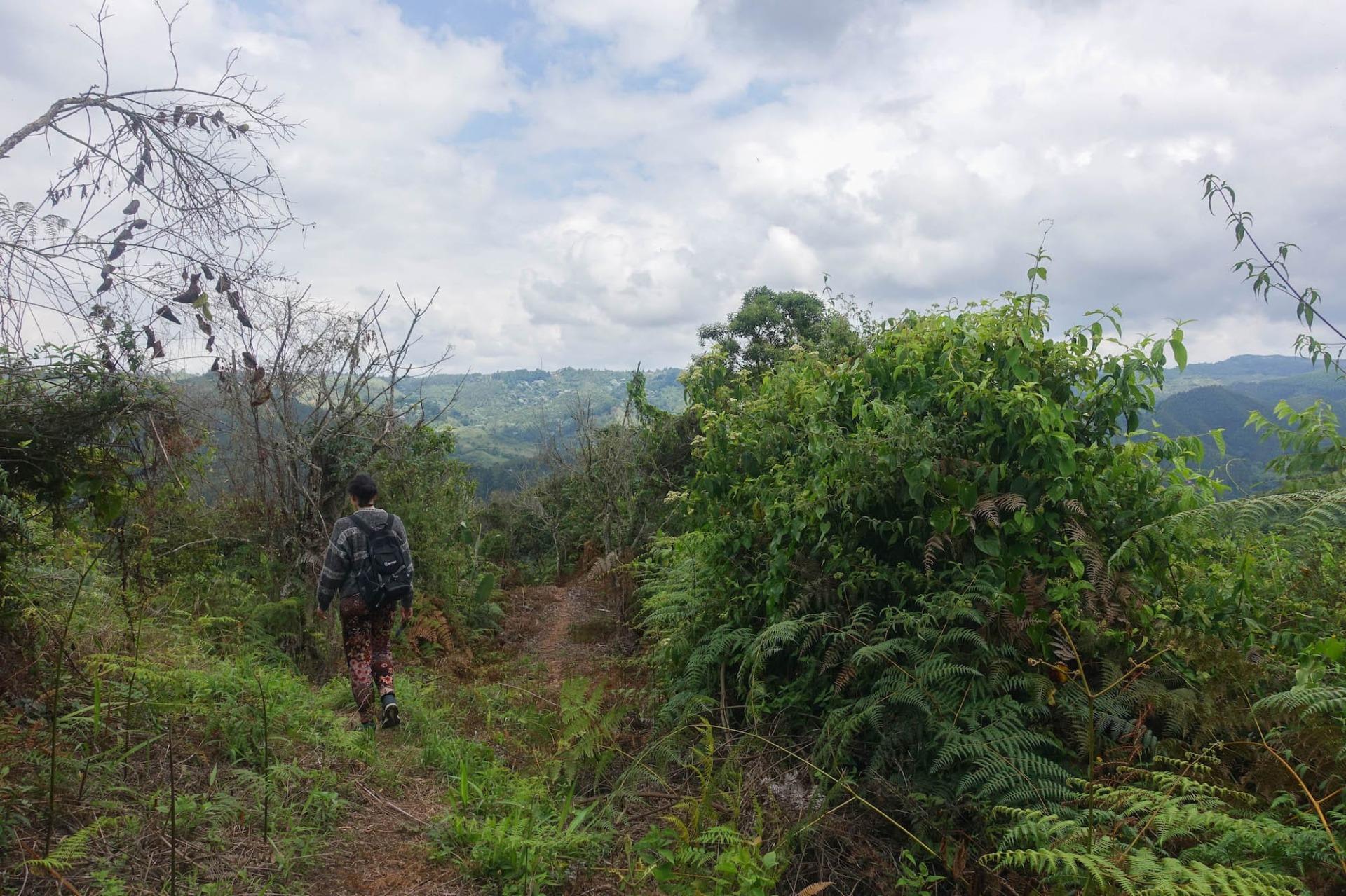 Kolumbien wandern