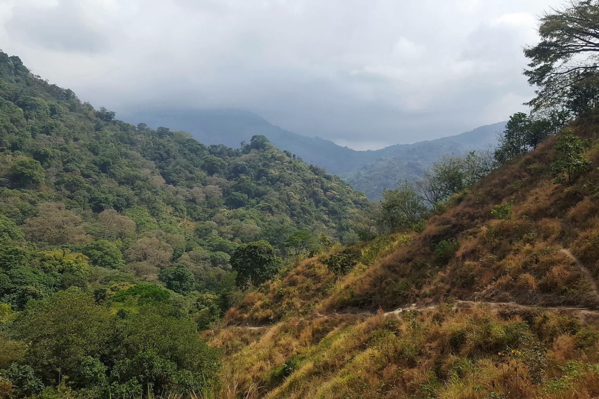 Kolumbien Minca